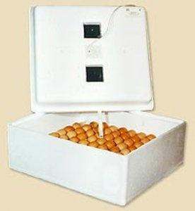 Автоматический домашний инкубатор бытовой Идеальная наседка (63 яйца с автоматическим поворотом яиц на 220В)