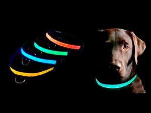 светящийся ошейник для собак