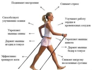 Степпер GymBit «Скандинавская ходьба»