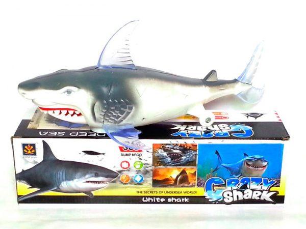 сумасшедшая акула