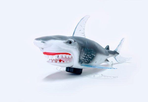 crazy-shark-2