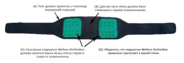 Корсет для мышц спины