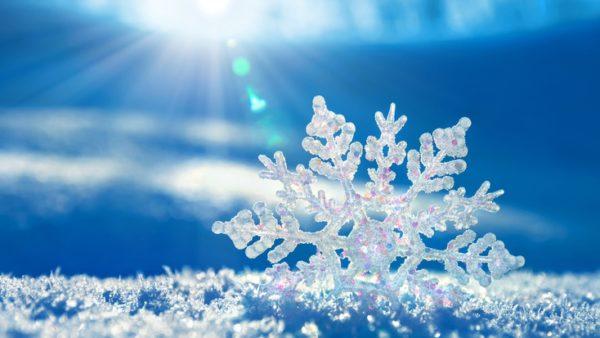 ручной отвал для снега